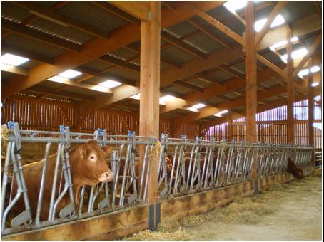 Entreprise fabrice pouget construction batiments agricoles batiment agric - Batiment agricole en bois ...